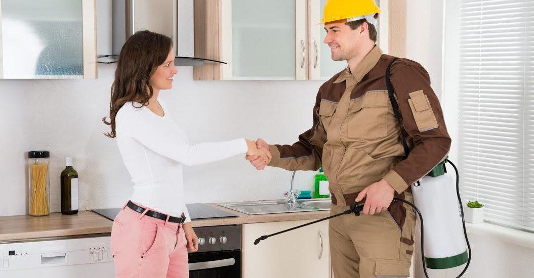 Pest free rental properties